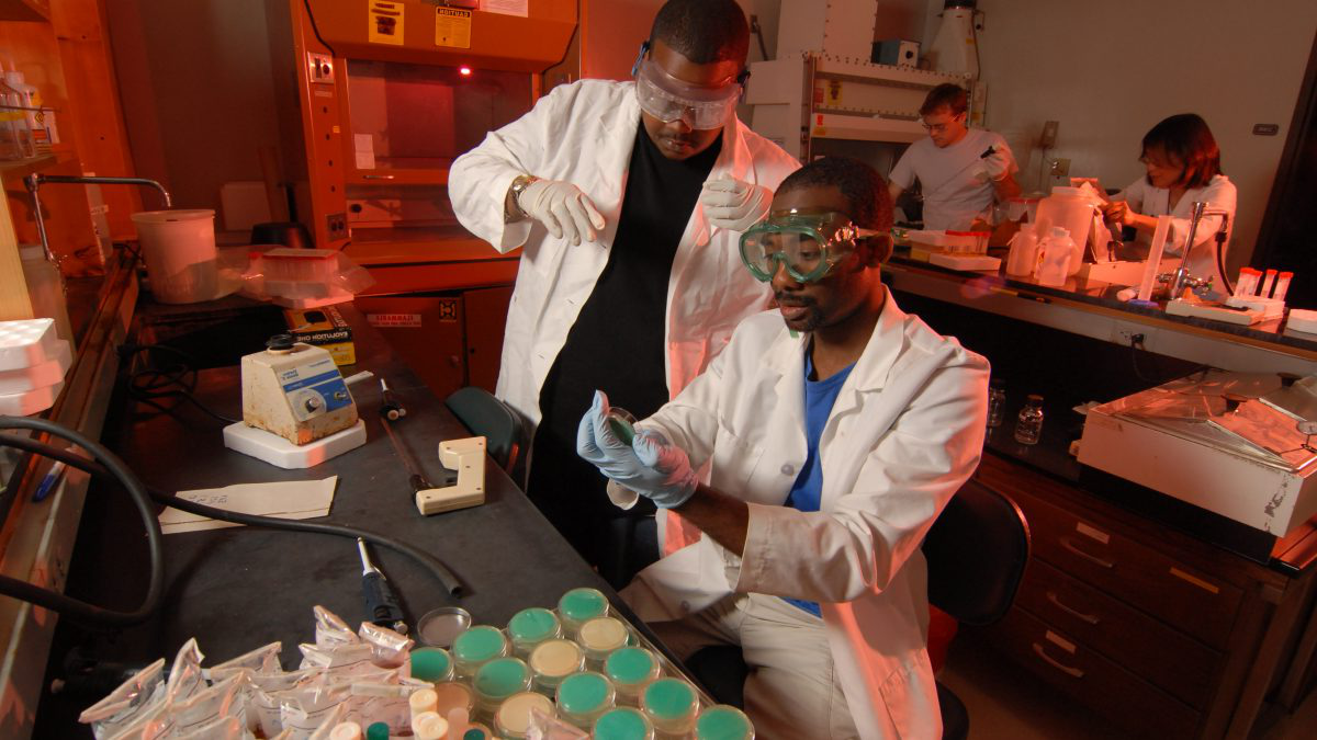 Workers in Gillings lab