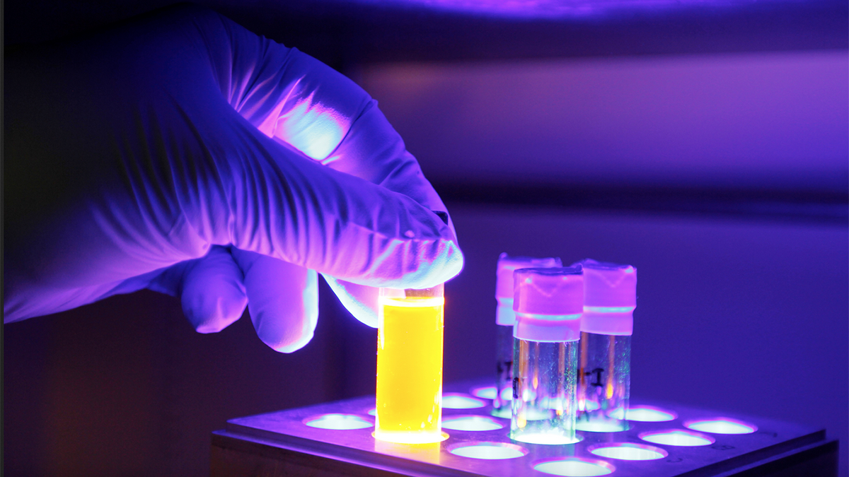 A graduate student sets up a light-driven reaction with an organic dye.