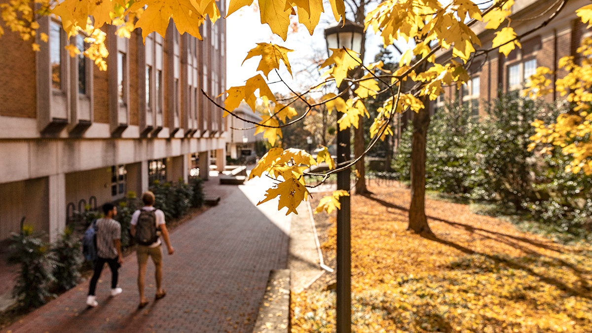 Students walking on campus in the fall.